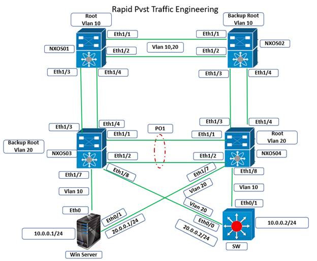 Rapid PVST Traffic Engineering