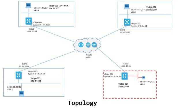 SD WAN vManage Topology